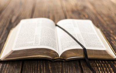 5 versículos bíblicos que las personas pueden leer cuando se sientan agobiadas por las noticias